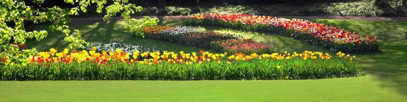 planting-and-lawncare_picture